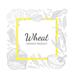 wheat organic product banner template farm food vector image