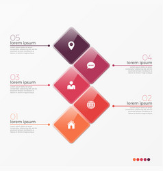5 option infographic template with squares vector image vector image