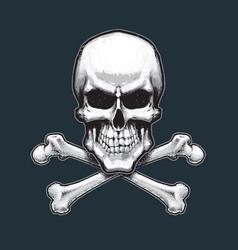 Pirates skull and bones vector