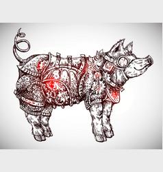 hand drawn steampunk pig vector image