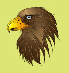 hawk head green vector image