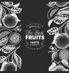 Orange fruit design template hand drawn vector