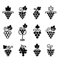 set grapes logos and icons vector image