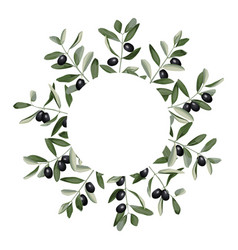 Template with olive brunches vector