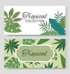 vintage banners set with tropical green leaves and vector image