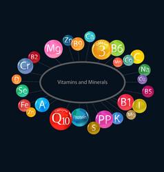 Vitamins and minerals scheme template vector