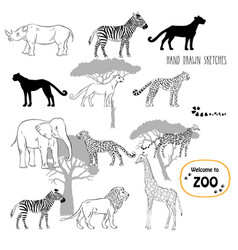 Zoo animals sketches background vector