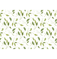 seamless pattern with sage light green leaves vector image vector image