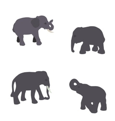 Set of Elephant Isolated on White Background Eps10 vector image vector image