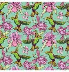 Seamless pattern Colibri and flowers on green vector image vector image