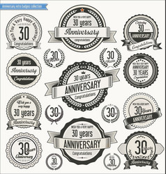 Anniversary retro badges collection 30 years vector