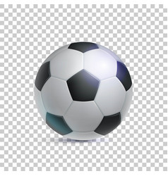 classic soccer ball realistic transparent vector image