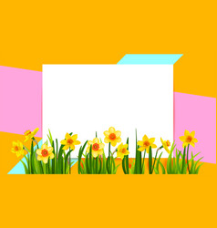 Floral holiday banner with daffodils vector