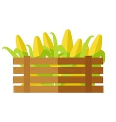 Fresh Corn at the Market vector