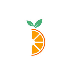 orange fruit graphic design template isolated vector image