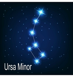 The constellation ursa minor star in the night vector