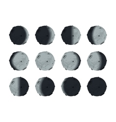 The whole cycle of moon phases from new to full on vector image