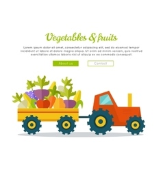 Vegetables Fruits Concept Web Banner vector image vector image