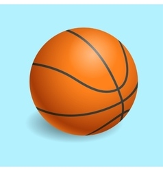 Basketball isolated on a white background vector
