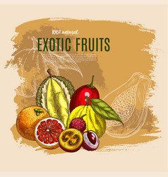 Exotic durian mango papaya fruits poster vector