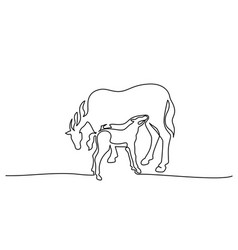 one line drawing horse feeds small foal vector image