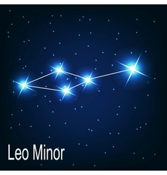 The constellation Leo Minor star in the night sky vector