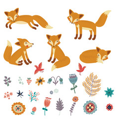 foxes set characters vector image vector image