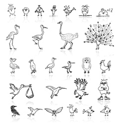 Sketch of funny birds for your design vector image vector image