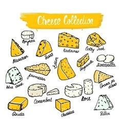 Cheese collection of cheese vector image