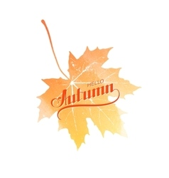 Hello Autumn label on watercolor maple leaf vector image