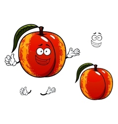 Nectarine fruit with leaf cartoon character vector