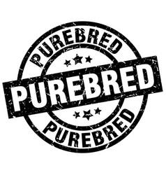 Purebred round grunge black stamp vector