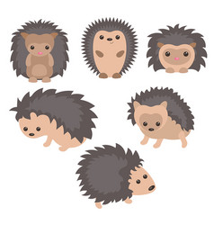 Set of cute hedgehogs set of cute hedgehogs vector