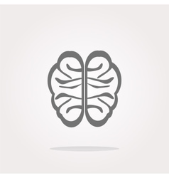 Brain Icon Brain Icon Eps10 Brain Icon vector image