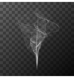Transparent white smoke object vector image