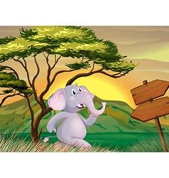 An elephant following the arrow signboards vector image vector image