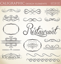 Calligraphic design elements to embellish your vector