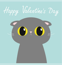 Happy valentines day british shorthair cat round vector
