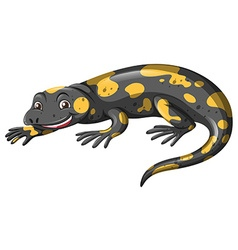 Lizard with black and yellow skin vector image