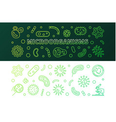 microorganisms green line banners vector image
