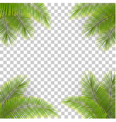 palm tree leaves in corners vector image