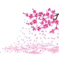 Sakura a lush cherry branch with purple flowers vector