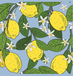 seamless pattern branches with lemons green vector image