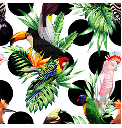 tropical birds and palm leaves pattern black vector image