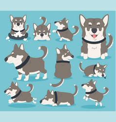 my dog eps10 vector image
