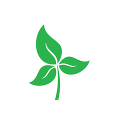 green leaves and ecology logo vector image vector image