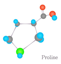 proline 3d molecule chemical science vector image