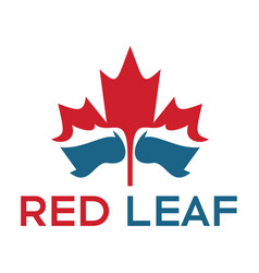 red maple leaf and water logo design vector image vector image