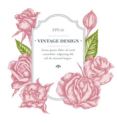 Badge design with pastel roses vector