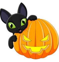 cartoon black cat with halloween pumpkin vector image